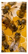 Honeybee Workers And Queen Bath Towel