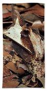 Horned Frog Camouflaged In Leaf Litter Hand Towel