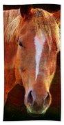 Horse 7 Bath Towel