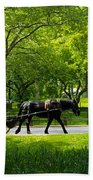 Horse And Carriage Central Park Bath Towel