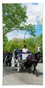 Horse And Carriages Central Park Bath Towel