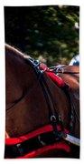 Horse And Rider Bath Towel