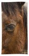 Horse Tear Bath Towel