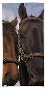 Horses  Belonging To Chagras Ecuador Bath Towel