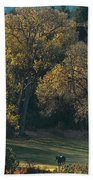 Horses In A Backlit Field With Fall Colored Trees Sedo Bath Towel