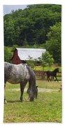 Horses On A Farm Bath Towel