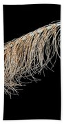Horsetail On Black Bath Towel