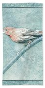 House Finch With Colored Sketch Effect Bath Towel