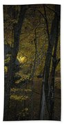 House In The Woods Bath Towel
