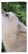 Howlling Arctic Wolf Pup Endangered Species Wildlife Rescue Bath Towel