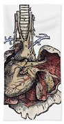 Human Heart, 1543 Bath Towel