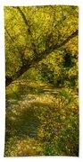 Humber River 5 Bath Towel