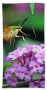 Hummingbird Clearwing Moth Bath Towel