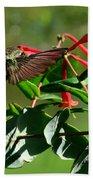 Hummingbird Morning Bath Towel