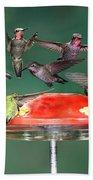 Hummingbirds Bath Towel