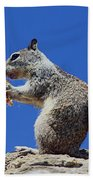 Hungry Ground Squirrel Bath Towel
