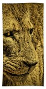 Hunter Bath Towel
