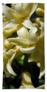 Hyacinth Named City Of Haarlem Bath Towel