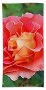 Hybrid Tea Rose  Bath Towel