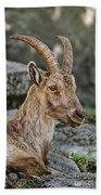 Ibex Pictures 38 Bath Towel