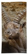 Ibex Pictures 40 Bath Towel