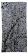 Ice Storm Bath Towel
