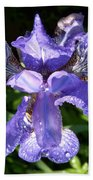 Iced Iris Bath Towel