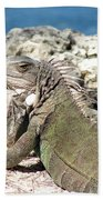 Iguana In The Sun Bath Towel