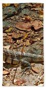 Iguana On A Trail In Manuel Antonio National Preserve-costa Rica Bath Towel
