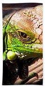 Iguana On The Deck At Mammacitas Bath Towel