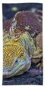 Iguana Bath Towel