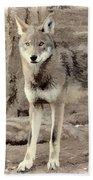 Illusion Of A Wolf Bath Towel