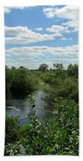 Images Of The Pantanal Bath Towel