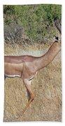 Impala Bath Towel