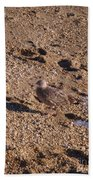 In The Stone Surf Gravel Cape May Nj Bath Towel