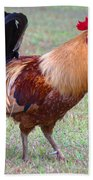 Infamous Kauai Chicken Bath Towel