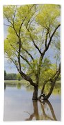 Iowa Flood Plains Bath Towel