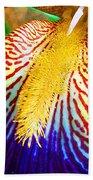 Iris Petal By Jan Marvin Bath Towel