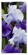 Iris Purple And White Fine Art Floral Photography Print As A Gift Bath Towel