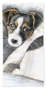 Jack Russell Puppy Bath Towel