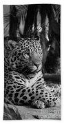 Jaguar Mono Bath Towel