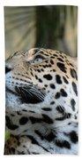 Jaguar Portrait Bath Towel