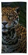 Jaguar Two Bath Towel