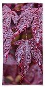 Japanese Acer Palmatum Atropurpurea Shrub Bath Towel