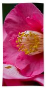 Japanese Camellia-the Official State Flower Of  Alabama Bath Towel