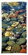 Japanese Garden Pool Rocks Bath Towel