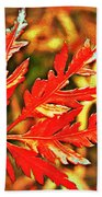 Japanese Maple Leaf  Hand Towel