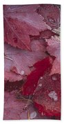 Japanese Maple Leaves With Frost Bath Towel
