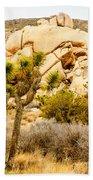 Joshua Tree National Park Skull Rock Bath Towel