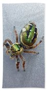 Jumping Spider - Green Salticidae Bath Towel